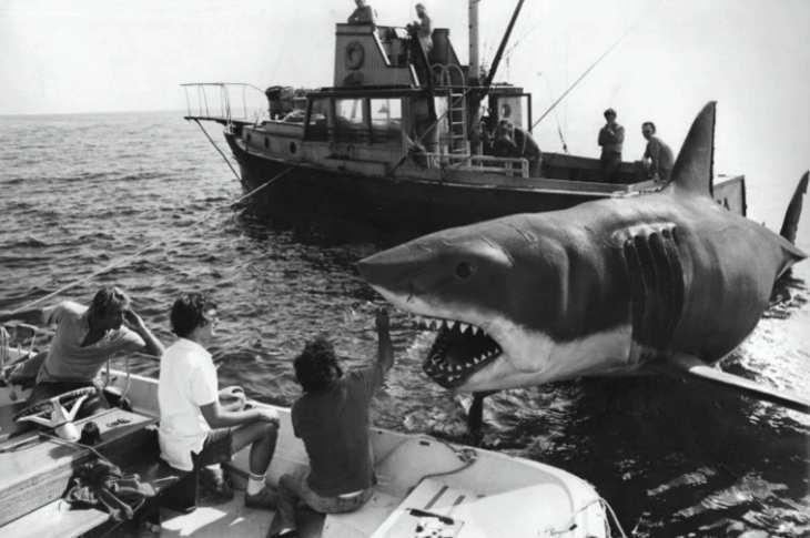 ac_15_Imagen del rodaje de Tiburón-interior2